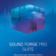MAGIX SOUND FORGE Pro Suite 14.0.130 Full Patch