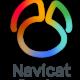 Navicat Premium 15.0.23 Full Keygen